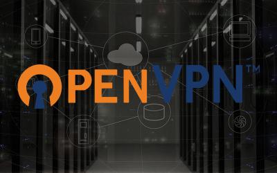 OpenVPNのロゴにサーバの背景