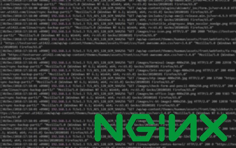 ログのスクリーンショットとnginxのロゴ画像